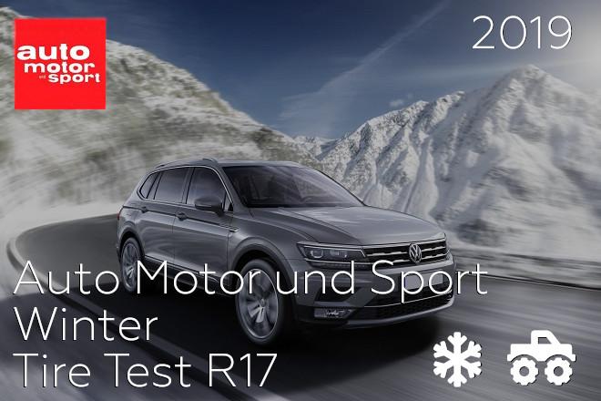 Auto Motor und Sport: Winter Tire Test R17